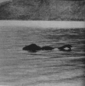 lochness-monster.jpg